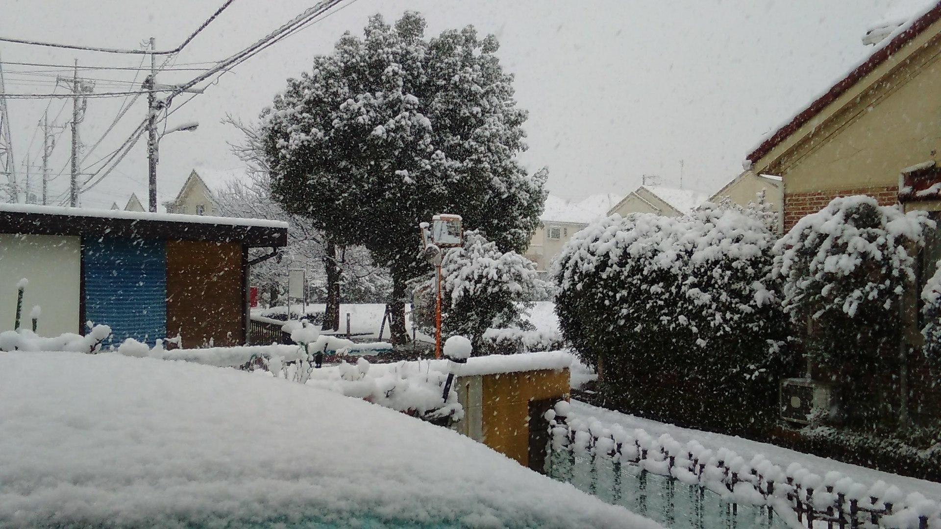 0122雪国?.JPG